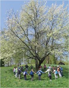 Pozdrav prirodi u proljeće